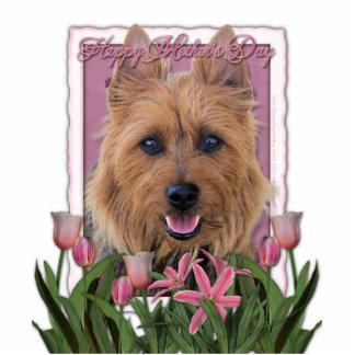 Mothers Day - Pink Tulips - Australian Terrier Statuette