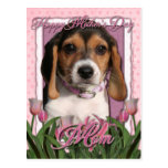 Mothers Day - Pink Tulips - Beagle Puppy Postcard