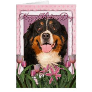 Mothers Day - Pink Tulips - Bernese Mountain Dog Greeting Card