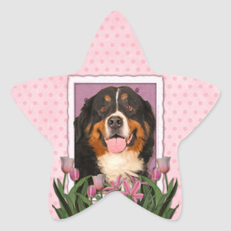 Mothers Day - Pink Tulips - Bernese Mountain Dog Star Sticker
