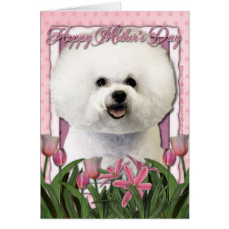 Mothers Day - Pink Tulips - Bichon Frise Greeting Card
