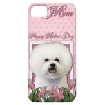 Mothers Day - Pink Tulips - Bichon Frise iPhone 5 Covers