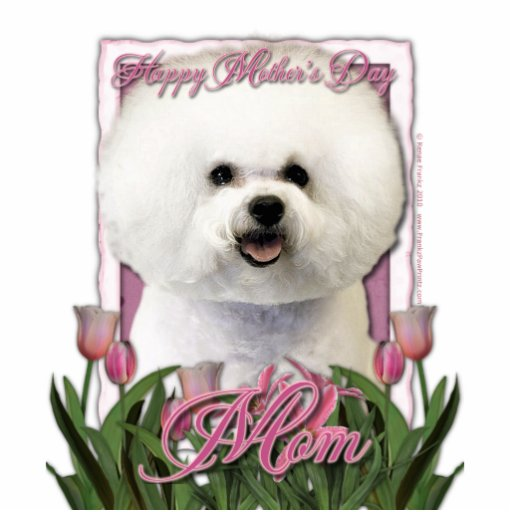 Mothers Day - Pink Tulips - Bichon Frise Standing Photo Sculpture