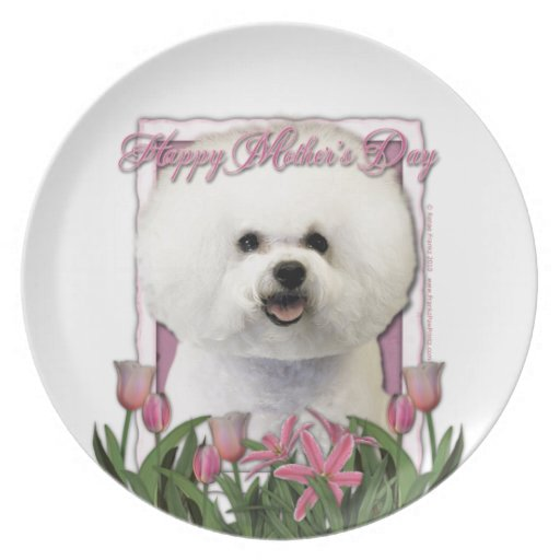 Mothers Day - Pink Tulips - Bichon Frise Party Plate
