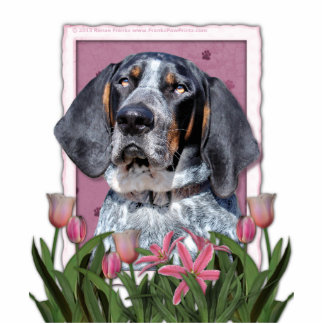 Mothers Day - Pink Tulips - Bluetick Coonhound Statuette
