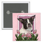Mothers Day - Pink Tulips Boston & Rat Terrier Mix Buttons