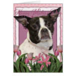 Mothers Day - Pink Tulips Boston & Rat Terrier Mix Greeting Card