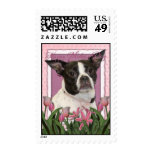 Mothers Day - Pink Tulips Boston & Rat Terrier Mix Stamps