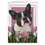 Mothers Day - Pink Tulips - Boston Terrier Greeting Cards