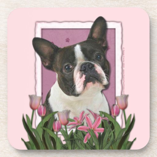 Mothers Day - Pink Tulips - Boston Terrier Coasters