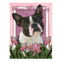 Mothers Day - Pink Tulips - Boston Terrier Postcard