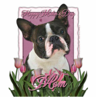 Mothers Day - Pink Tulips - Boston Terrier Statuette