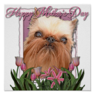 Mothers Day - Pink Tulips - Brussels Griffon Poster