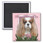 Mothers Day - Pink Tulips - Cavalier - Blenheim Magnets