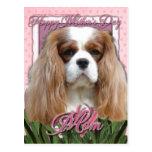 Mothers Day - Pink Tulips - Cavalier - Blenheim Postcard