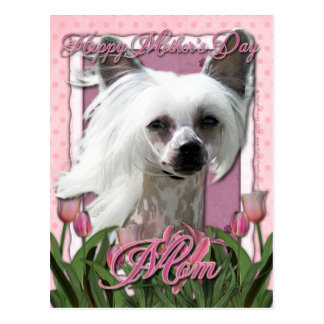 Mothers Day - Pink Tulips - Chinese Crested -Kahlo Postcard