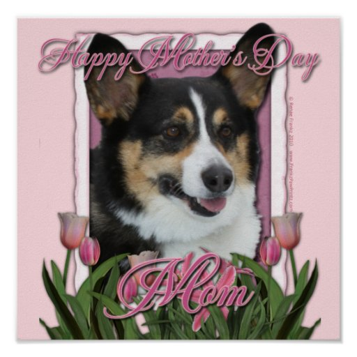 Mothers Day - Pink Tulips - Corgi - Owen Poster