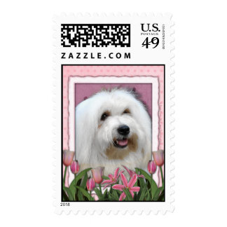 Mothers Day - Pink Tulips - Coton de Tulear Stamps