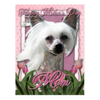 Mothers Day - Pink Tulips - Crestie - Kahlo Postcard