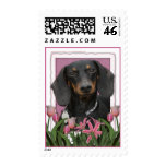 Mothers Day - Pink Tulips - Dachshund - Winston Postage Stamps
