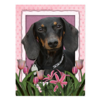 Mothers Day - Pink Tulips - Dachshund - Winston Post Cards