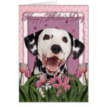 Mothers Day - Pink Tulips - Dalmatian Greeting Card