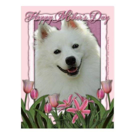 Mothers Day - Pink Tulips - German Shepherd Postcard