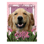 Mothers Day - Pink Tulips -Golden Retriever Mickey Postcards