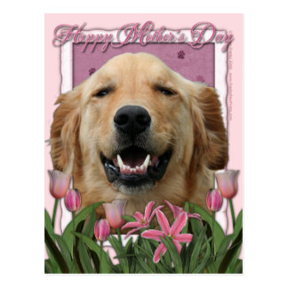 Mothers Day - Pink Tulips - Golden Retriever Postcard