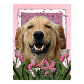 Mothers Day - Pink Tulips - Golden Retriever Post Card