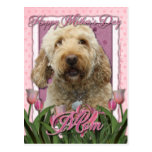 Mothers Day - Pink Tulips - Goldendoodle Postcard