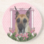 Mothers Day - Pink Tulips - Great Dane Drink Coasters