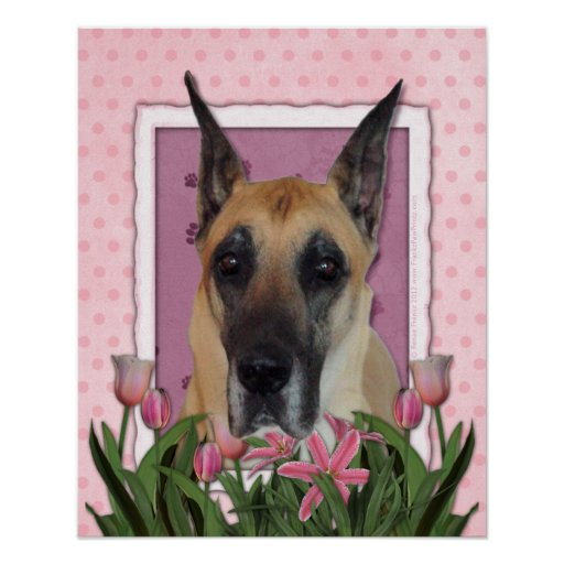Mothers Day - Pink Tulips - Great Dane Posters
