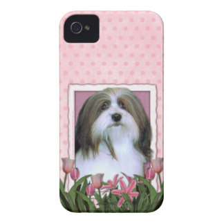 Mothers Day - Pink Tulips - Havanese iPhone 4 Cover