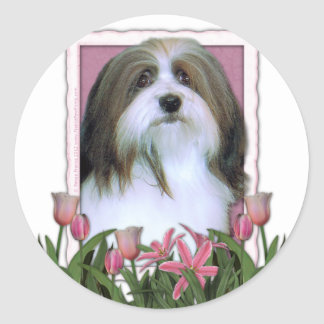 Mothers Day - Pink Tulips - Havanese Sticker