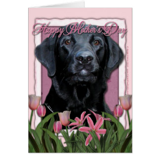Mothers Day - Pink Tulips - Labrador - Black  Gage Greeting Cards