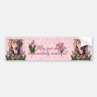 Mothers Day - Pink Tulips - Labrador - Chocolate Car Bumper Sticker