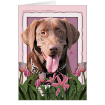 Mothers Day - Pink Tulips - Labrador - Chocolate Cards