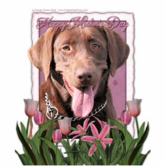 Mothers Day - Pink Tulips - Labrador - Chocolate Statuette
