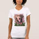 Mothers Day - Pink Tulips - Labrador - Chocolate Tee Shirt