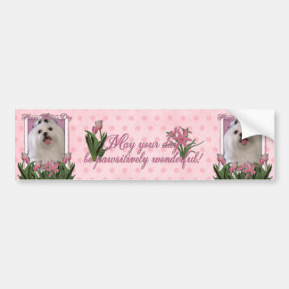 Mothers Day - Pink Tulips - Maltese Bumper Sticker