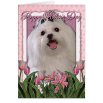 Mothers Day - Pink Tulips - Maltese Card