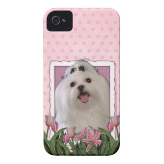 Mothers Day - Pink Tulips - Maltese iPhone 4 Cover