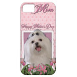 Mothers Day - Pink Tulips - Maltese iPhone 5 Cases