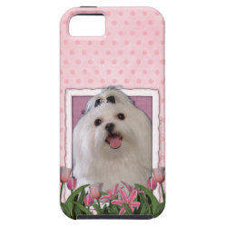 Case-Mate Vibe iPhone 5 Case with Maltese Phone Cases design