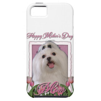 Mothers Day - Pink Tulips - Maltese iPhone SE/5/5s Case