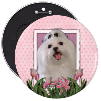 Mothers Day - Pink Tulips - Maltese Pinback Button