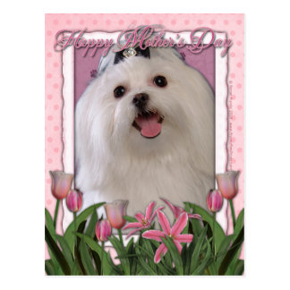 Mothers Day - Pink Tulips - Maltese Postcard
