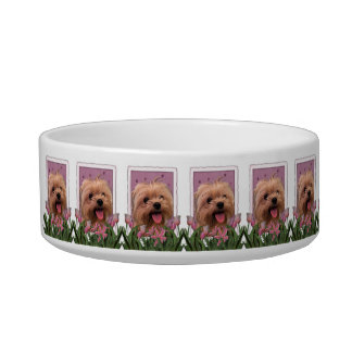 Mothers Day - Pink Tulips - Morkie - Lacey Bowl