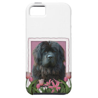 Mothers Day - Pink Tulips - Newfoundland iPhone SE/5/5s Case